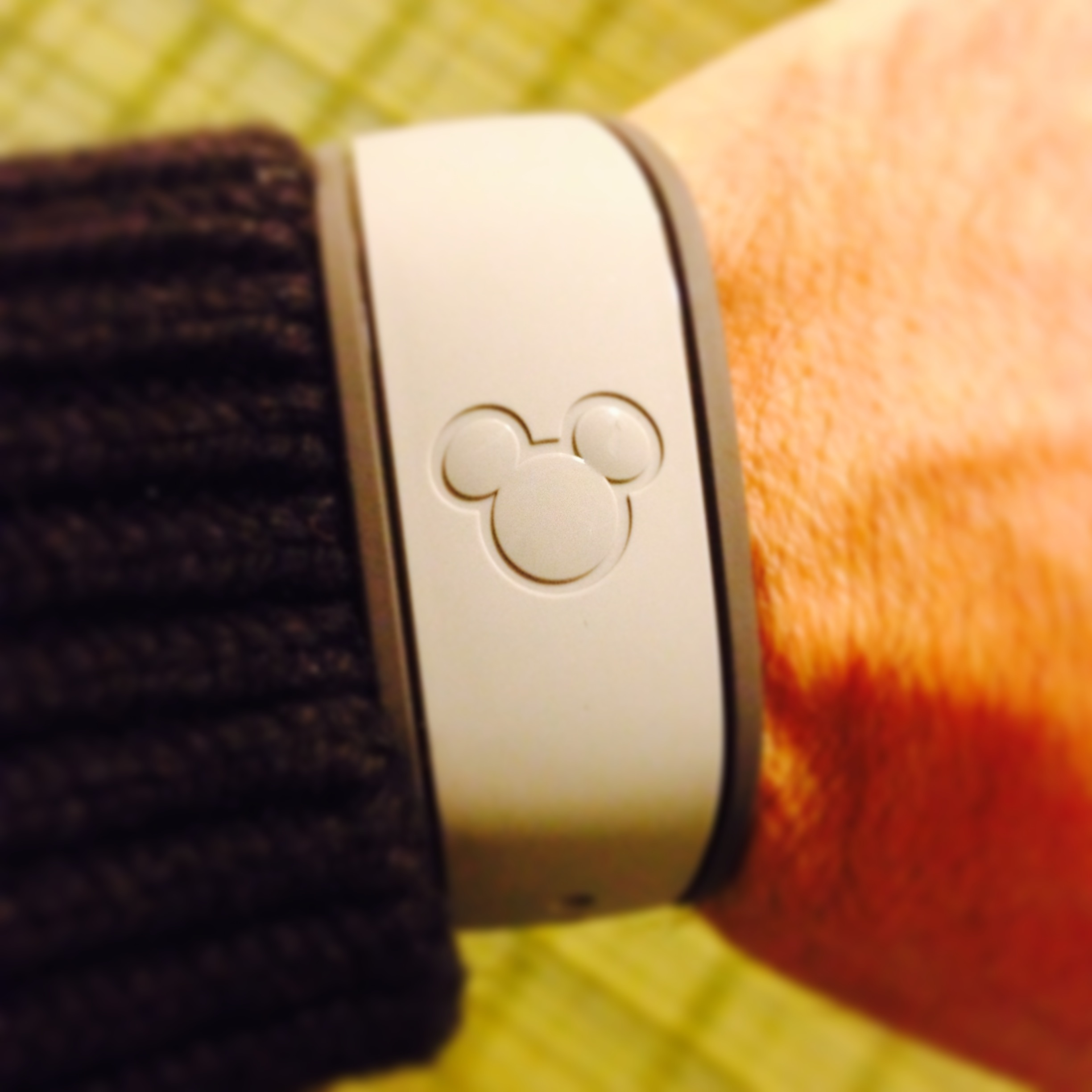disney theme park wearable UX